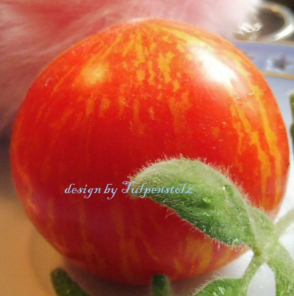 ♥ Fuzzy Wuzzy,flauschige Ampel Tomate BIO Samen Rarität,Garten in Hamburg