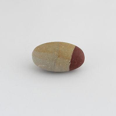 Shiva Lingam Piedra Curativa De Río Narmada, India, Al Tradición Védica