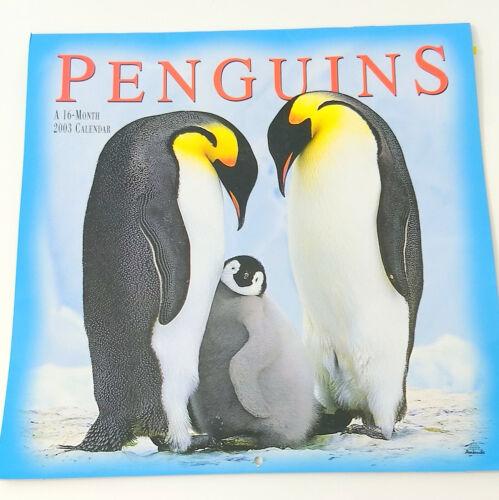2003 Penguin Wall Calendar 16 Months Oversize Antarctica  Birds Photography