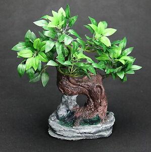 Arte-artificialmente-piante-ficus-Benjamin-BONSAI-Verde-Bianco-in-Guscio-Nuovo