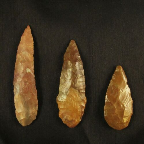 Ancient Neolithic Western Sahara Stone Knife Blade Lot ~ Museum Quality!