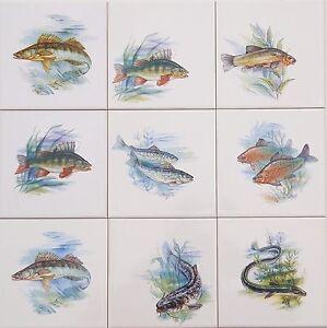 Fliesen mit Fischmotiv als 9er Set auf 15x15cm Fliesen (AAl  Zander Hecht Wels)