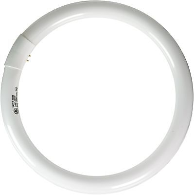 11039 32 watt daylight circline t9 light