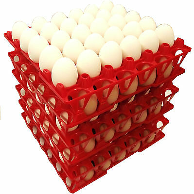 96 Rite Farm Products 30 Egg Poly Chicken Trays Shipping Carton Poultry Flat