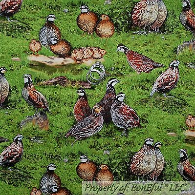 BonEful FABRIC Cotton Quilt Thanksgiving Pheasant Bird Green Grass Farm 3D SCRAP