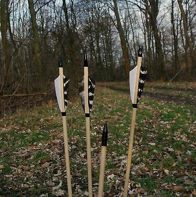 6 Holzpfeile Naturfedern traditionell
