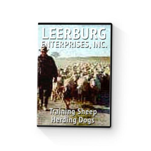 Training Sheep Herding Dogs with Karl Fuller DVD by Leerburg