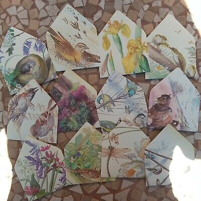 12 Handmade ENVELOPES with Edith Holden Watercolours & Cream insert cards (A)