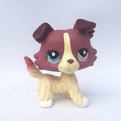 Girls Shop Name (Littlest Pet Shop #1262 girls Collection LPS dog figure toys Red)