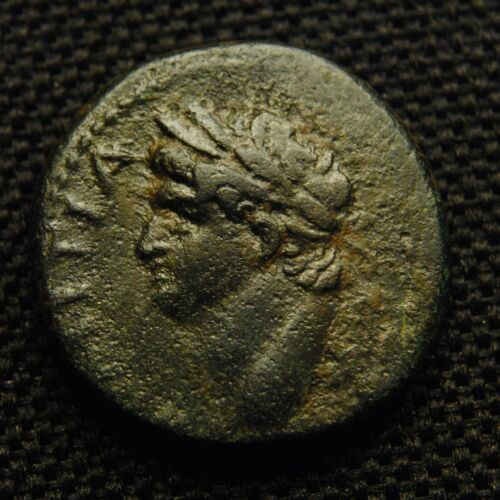 Æ22 Antioch ad Orontem Domitian as Cæsar Rv Large S C Wreath 21-2mm 8.37 grams