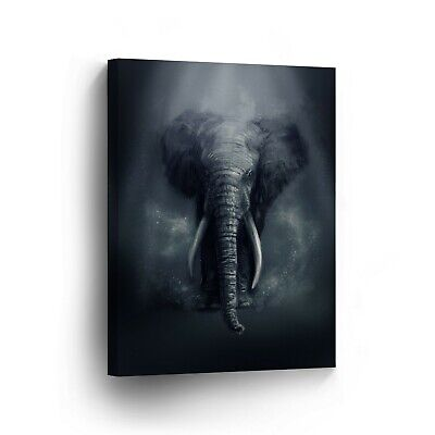 Canvas Decor Wall Art Photo Print Cute Elephant Framed Ready to Hang  ()