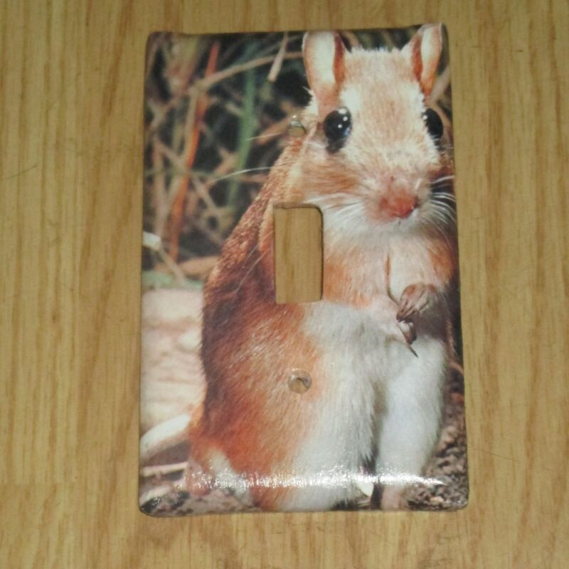 GERBIL HAMSTER PET ANIMAL LIGHT SWITCH COVER PLATE