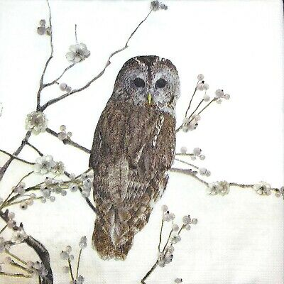 3 x Single Paper Napkins For Decoupage Craft Tissue Grey Owl On White M280 (Grey Paper Napkins)