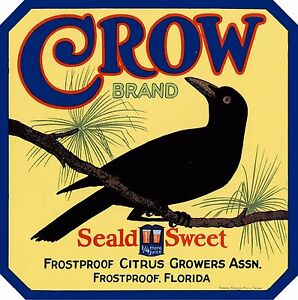 Frostproof Florida Seald Sweet Crow Orange Citrus Fruit Crate Label Print