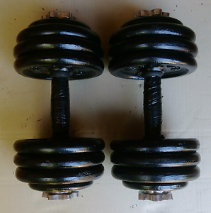 Adjustable dumbells dumbbells:39kg Chatswood Willoughby Area Preview