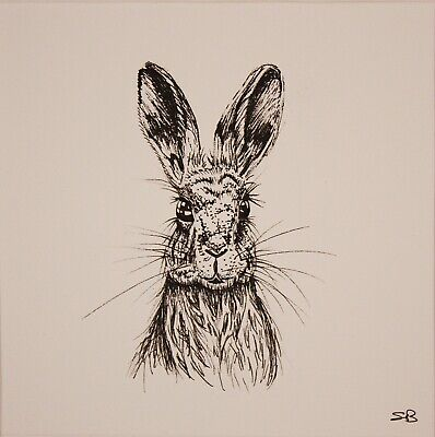 Original Artwork by Sungy Drawing Hare Rabbit