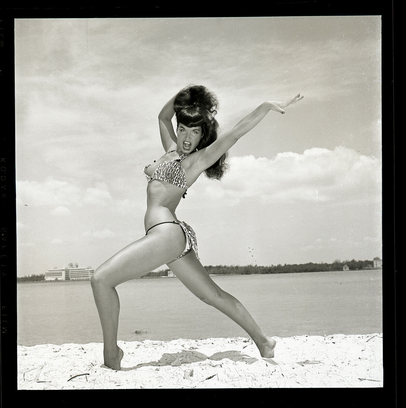 RARE Bettie Page Leopard Bikini Original 54 Camera Negative Bunny Yeager PinUp - $1,480.00