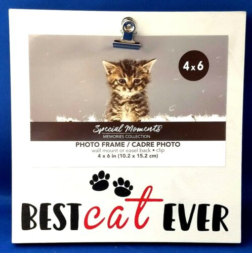 BEST CAT EVER 4 x 6 Clip Photo Picture Frame - Special Moments Collection
