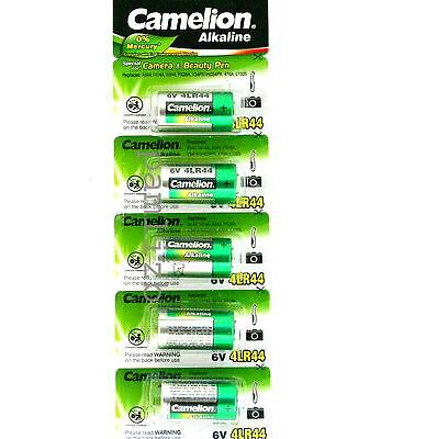 4LR44 6v Alkaline battery PX28A 476A  A544  4A76 batteries  Camelion 6 volt x 5