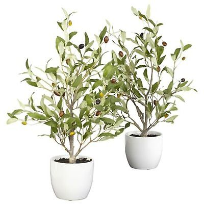 2 18 Natural Realistic Looking Olive Silk Tree W/ Vase Artificial Faux Plants