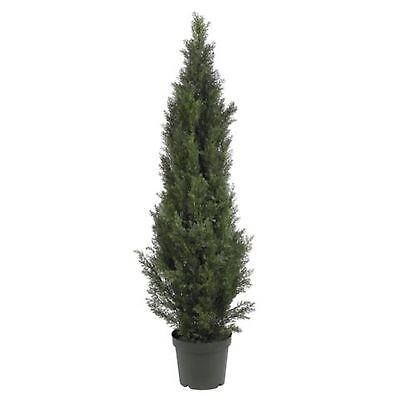 Decorative Natural Looking Artificial 5' Cedar Pine Tree (indoor/outdoor) Plants