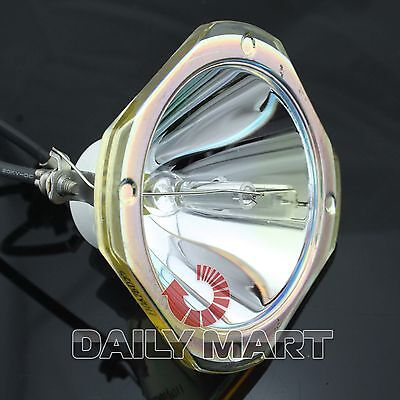 Projector Lamp Bare Bulb For Acer P1166p Ec.j6900.003