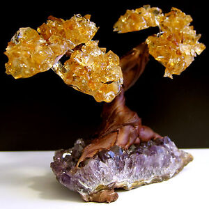 Citrine & Amethyst Geode Crystal Cluster Wire Life Tree TWIN SPIRIT TREE  COOL!