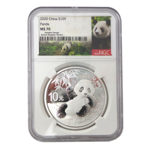 NGC MS 70 2020 China 30g Silver Panda ¥10 Coin
