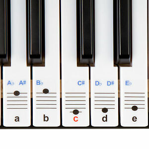 New Keysies Transparent Plastic Piano Keyboard Note