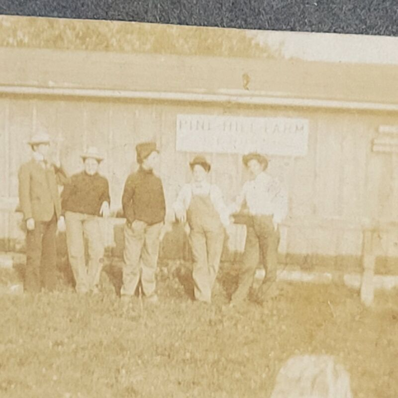 Antique late 1800s Pine Hill farm NY Blooming Grove New York cabinet card photo