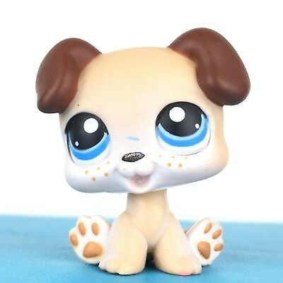 Used, Authentic Littlest Pet Shop #143 Dog Baby Boxer Puppy / Original Hasbro LPS for sale  Shipping to Canada