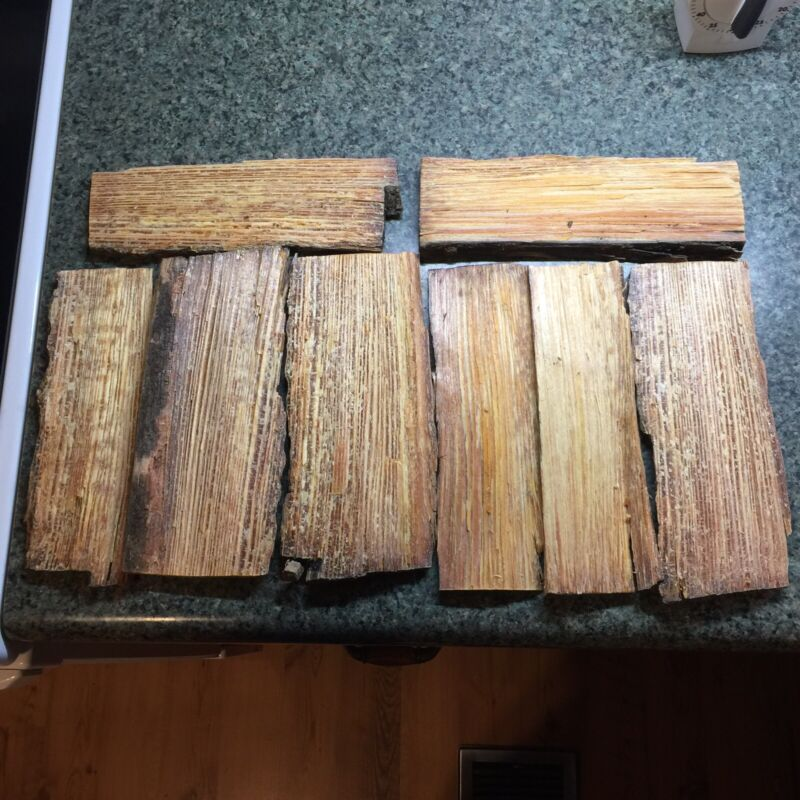 Fatwood mini slabs - 2.5lbs kindling