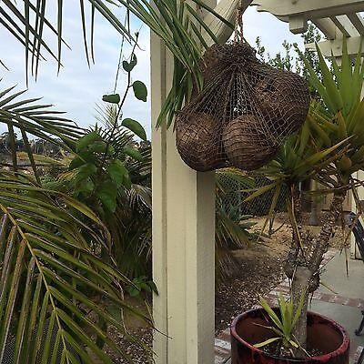 New Fishnet Sack of Coconuts Smokin Tikis Hawaii tiki bar mug decor  21517f