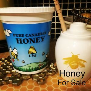 All natural raw honey for sale