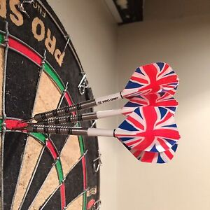 Chizzy 22g Darts (Pixel and Gold) James wade 20g Kitchener / Waterloo Kitchener Area image 3