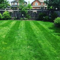 LAWN CARE Great prices even better service