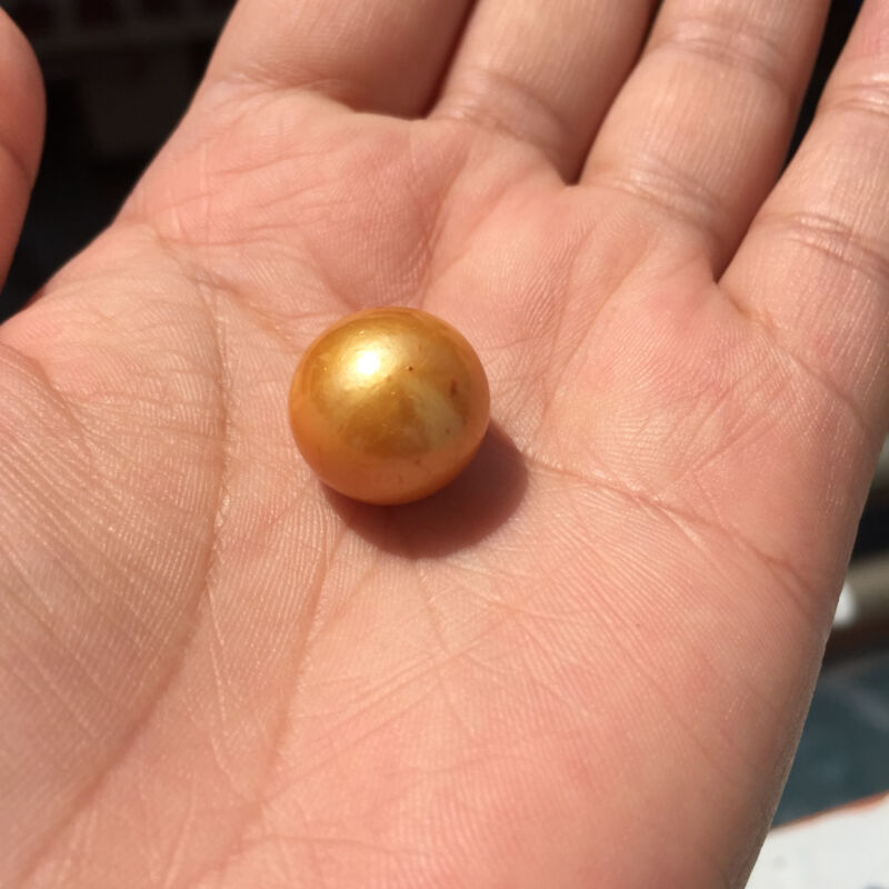 Huge Natural Round AAA 15-15.5mm Golden South Sea Loose Pearl Full Drilled