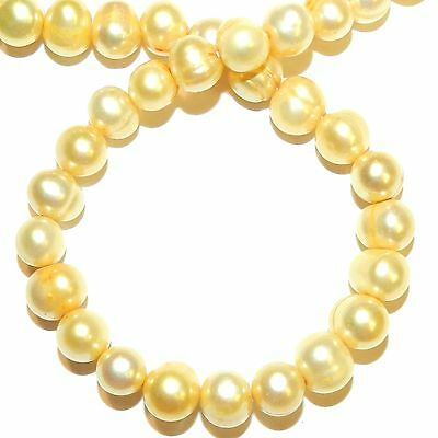 """NP554 Golden Yellow 6mm - 7mm Semi- Round Cultured Freshwater Pearl Beads 15"""""""