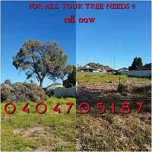 AFFORDABLE TREE AND GARDEN SERVICE Ryde Ryde Area Preview