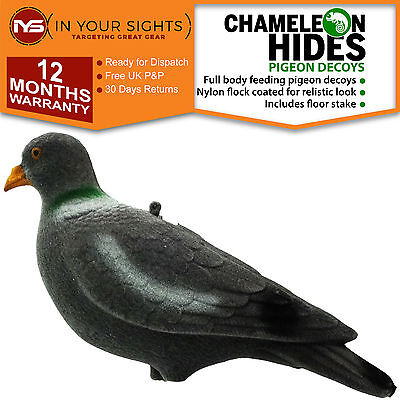 6 x Flocked pigeon decoys / Full body pigeon shooting decoy including pegs