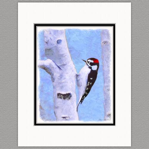 Downy Woodpecker Wild Bird Original Art Print 8x10 Matted to 11x14