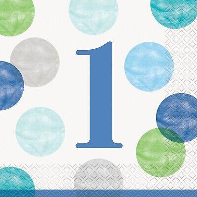 Blau Punkte Jungen 1. Erster Geburtstag Geschirr Auswahl - Erster Geburtstag Party Dekorationen