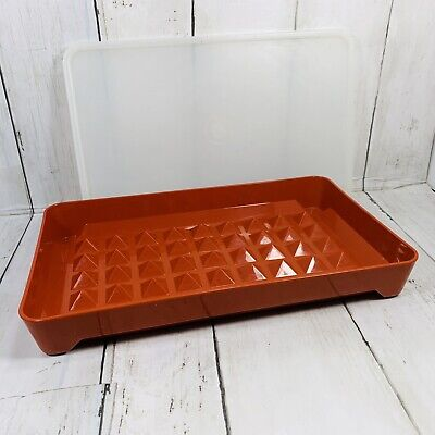 VINTAGE TUPPERWARE PAPRIKA HOT DOG DELI MEAT KEEPER WITH SEAL #1292