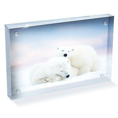 Beautiful Snow Polar White Bear Photo Block 6 x 4