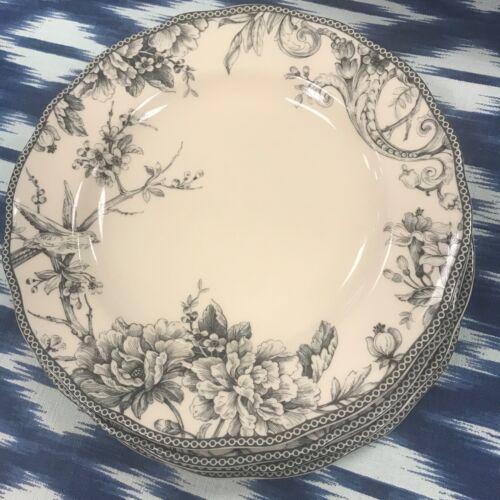 222 fifth Adelaide GREY Bird Round Dinner Plates Set 4~NEW ~