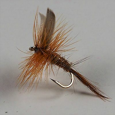 Standard Dry Ginger Quill dry flies on size 16 hooks by Salmoflies Fishing Flies