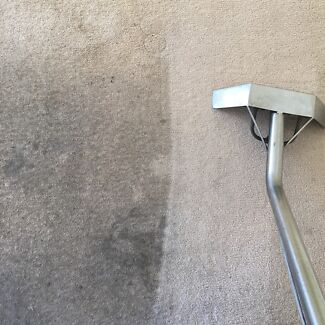 3 rooms only $59 steam cleaned