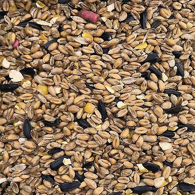 20Kg Hopewells Garden Wild Bird Seed Food suitable for feeders and bird tables