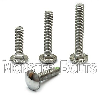 14-20 Stainless Steel Carriage Bolts Square Neck A2 18-8 Aka Shaker Screen