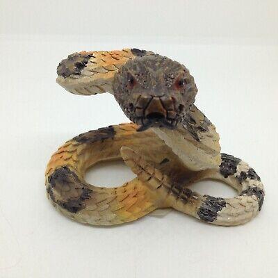 king cobra snake photos